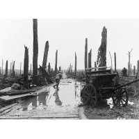 Assault on Passchendaele